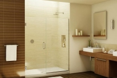 Frameless Shower Panel and Door