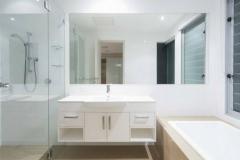 Large Vanity Mirror and Shower Door